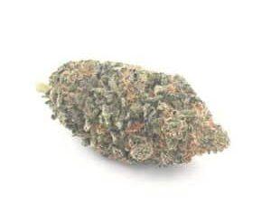 Buy Blue Coma Marijuana