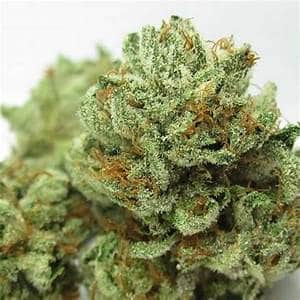 Buy Indica Cannabis Strains