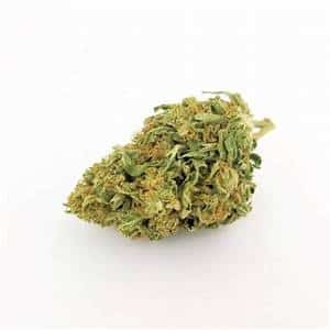 Buy Sativa Cannabis Strains