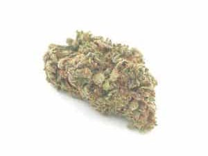 Buy Citrus Skunk Marijuana
