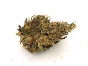 Buy Organic Harlequin Marijuana