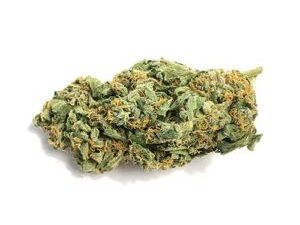 Buy Jack Herer Marijuana
