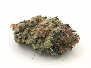 Buy Purple Haze Marijuana
