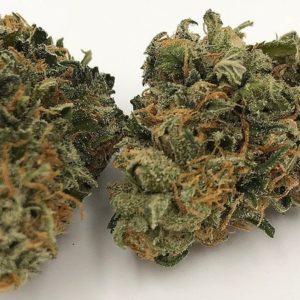 Buy Afgoo Marijuana