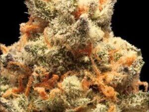 Buy Pez Marijuana
