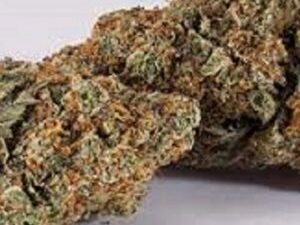 Buy Diamond OG Marijuana