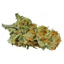 Buy Super Lemon Haze Marijuana