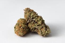 Buy Grape Ape Marijuana