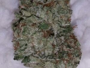 Buy Gorilla Glue #4 Marijuana