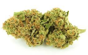 Buy Girl Scout Cookies Marijuana