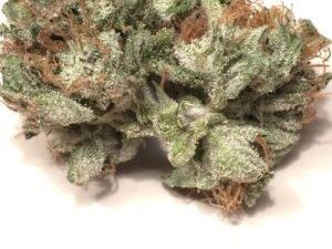 Buy Berry White Marijuana