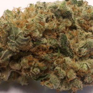 Buy Laughing Buddha Marijuana