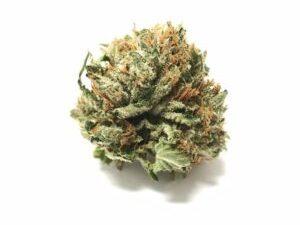 Buy Maui Wowie Marijuana