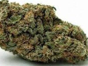 Buy Permafrost Marijuana