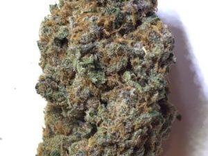 Buy Purple Urkle Marijuana