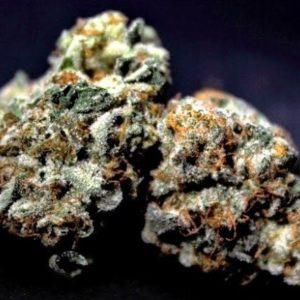 Buy Thai Girl Marijuana