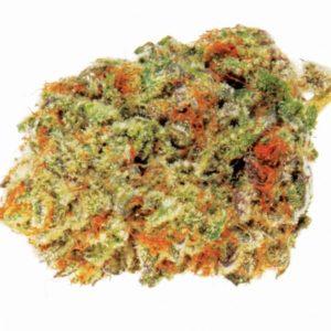Buy Tangerine Dream Marijuana