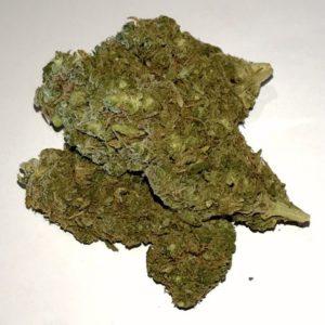 Buy Tangie Marijuana