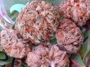 Buy Obama Kush Marijuana